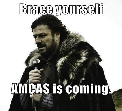 The Ten Guidelines of the AMCAS Essay