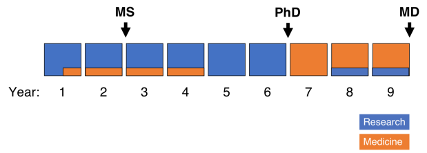 MDPhD Timeline