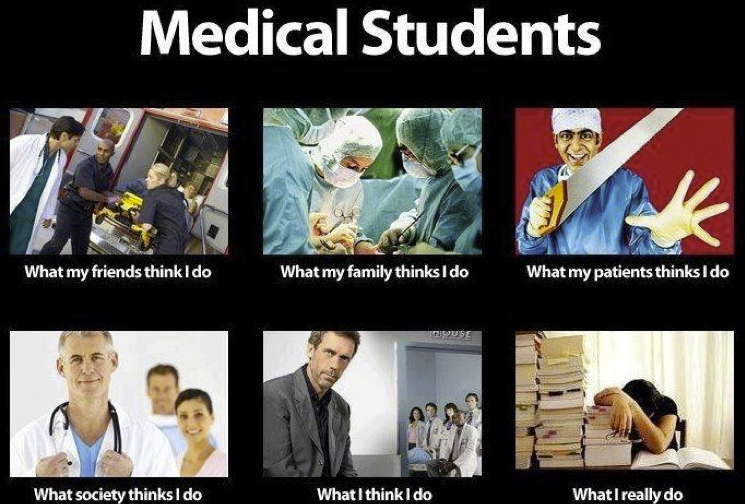 Med Students.png